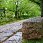 T0002「京都の都市計画に携わり緑が多く子どもたちが生活しやすいまちづくりをしていきたい」